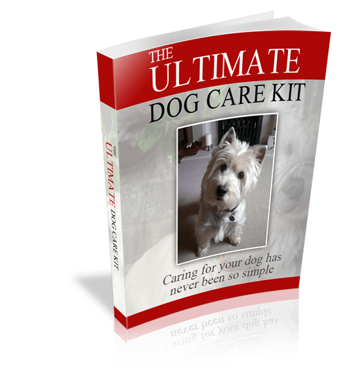 The-Ultimate-Dog-Care-Kit-500